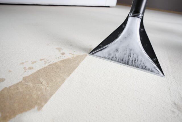 Профессиональная чистка ковров в Киеве